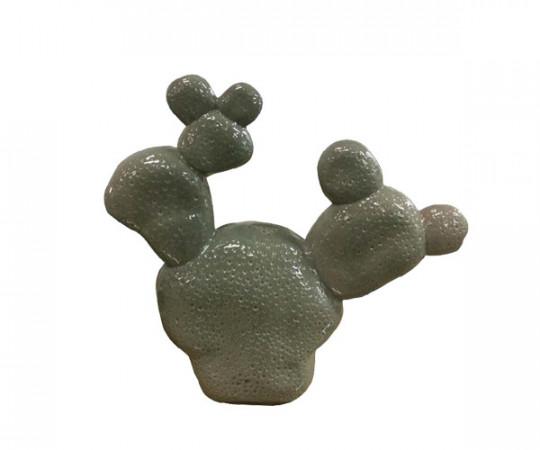 HAY Cacti - Tres