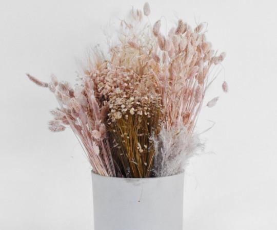 tørrede blomster tørret blomster evighedsblomster
