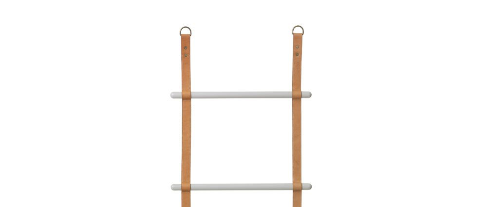 FERM LADDER